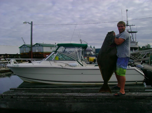 campbell river halibut fishing